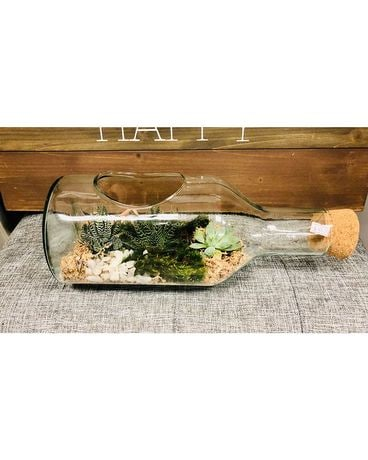 Succulents in a Bottle Plant