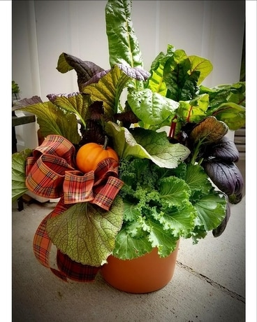 Autumn Vegetable Planter Plant