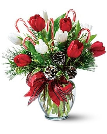 Peppermint Tulips Flower Arrangement