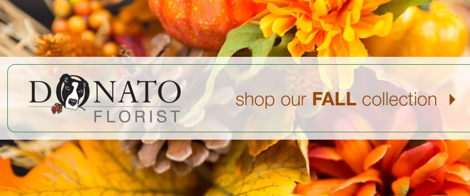 Shop Fall Flowers & Gifts