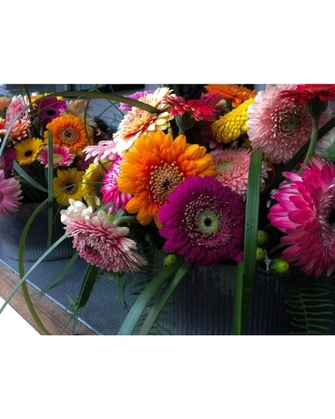 Colorful Gerbera Daisies Flower Arrangement