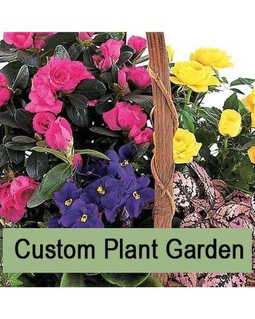 Custom Planter Designer's Choice Flower Arrangement