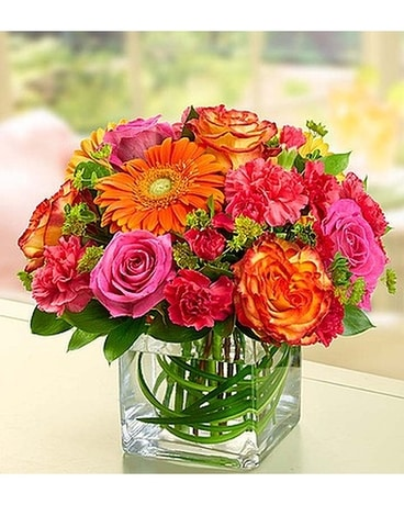 Manassas Florist Flower Delivery By Flowers With Passion