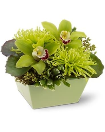 Go green by whites flowers in calgary ab whites flowers go green by whites flowers flower arrangement mightylinksfo