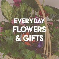 Everyday Flowers and Gifts