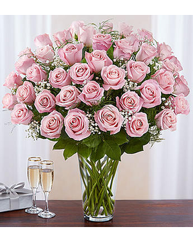 Ultimate Long Stem Pink Roses