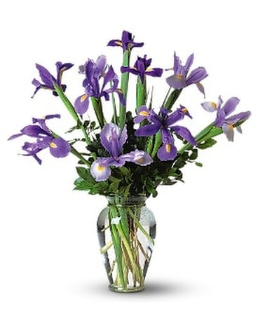 Incredible Iris Flower Arrangement
