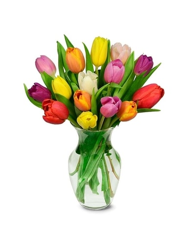 Rainbow Tulips in Vase Flower Arrangement