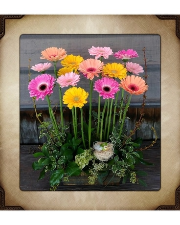Let Love Grow Flower Arrangement