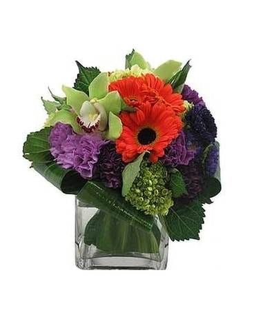Mothers Day Flowers Delivery Shaker Heights Oh Plantscaping Blooms
