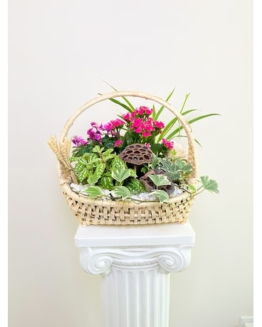 Mix Planter Basket
