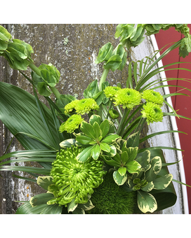 Fresh Greens Flower Arrangement