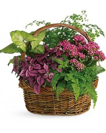 Secret Garden Basket Flower Arrangement