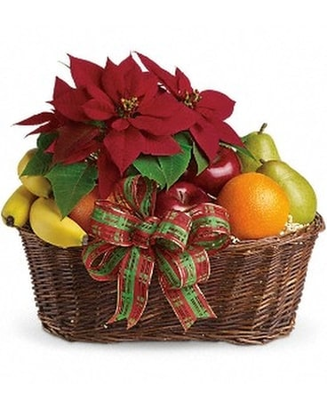 Fruit and Poinsettia Basket - by New York Best Flo Custom product