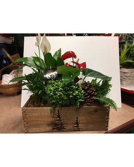 Christmas Tree Box Flower Arrangement