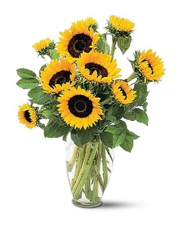 Shining Sunflowers Flower Arrangement