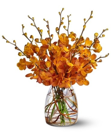 Orchid Embers Flower Arrangement