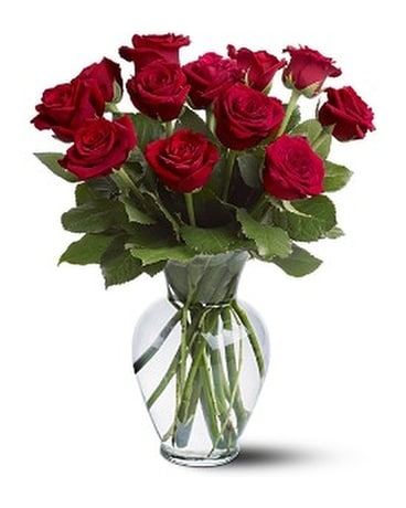 12 Red Roses Flowers