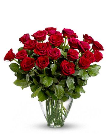 Two Dozen Red Roses with Choice of Accent Flower Arrangement