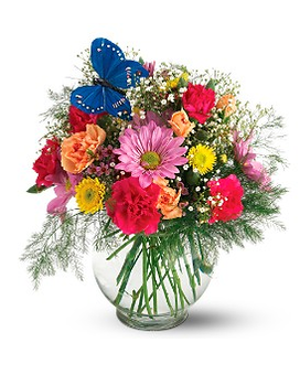 Teleflora's Butterfly & Blossoms Vase Flower Arrangement