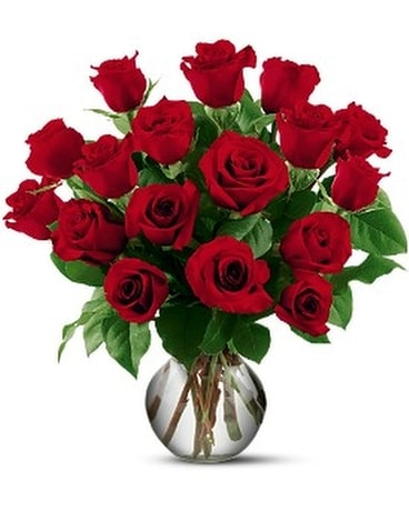 18 Red Roses - by Ivywood Florist Flower Arrangement