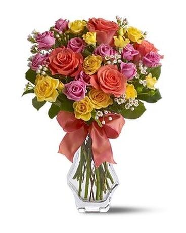 Just Splendid Roses