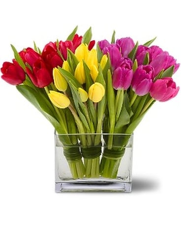Teleflora's Tulips Together Flower Arrangement
