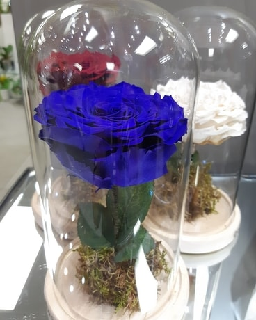 Giant Eternal Beauty & Beast Flower Arrangement
