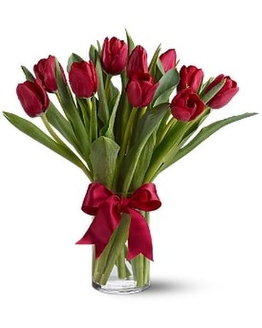 Teleflora's Radiantly Red Tulips - by My Florist Flower Arrangement