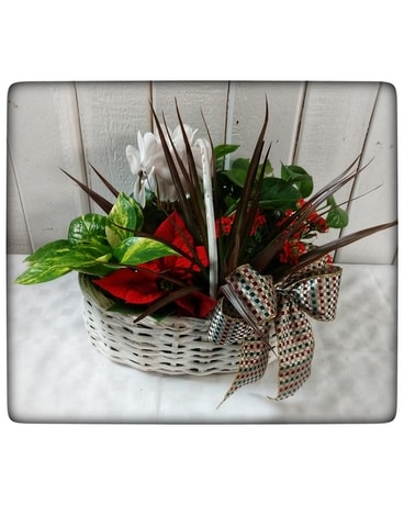 Winter Blooms Basket Flower Arrangement