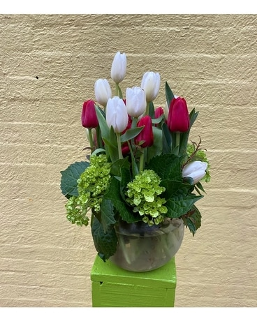 Red and White Tulips Flower Arrangement