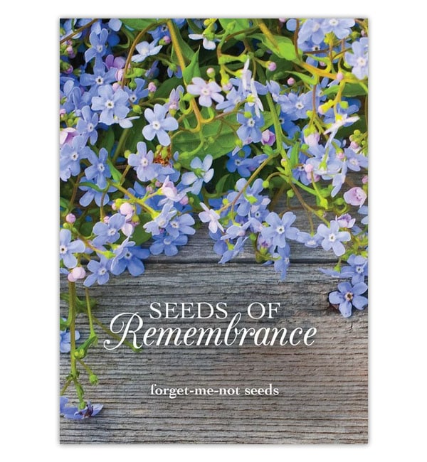 Remembrance Forget Me Not Seeds