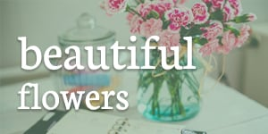 Beautiful Flowers Bouquets