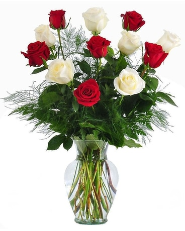 Long stem red white roses in baltimore md raimondis flowers long stem red white roses flower arrangement mightylinksfo