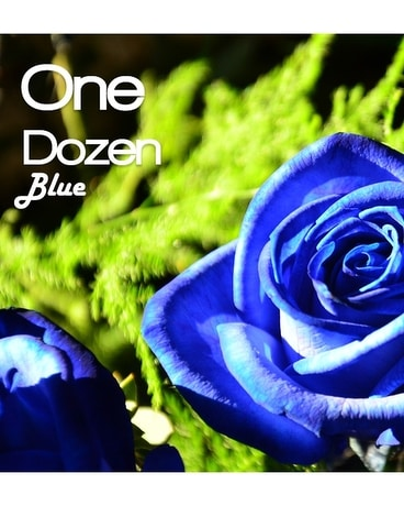 Dozen Tinted Blue Roses Flower Arrangement