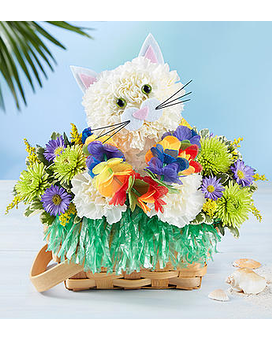 Luau Kitty by 1800flowers Flower Arrangement
