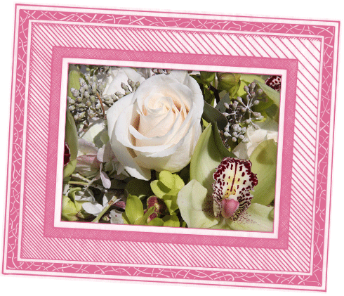 Create Your Arrangement Photo