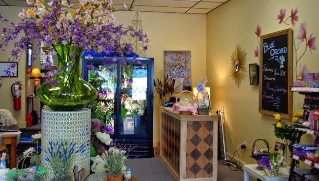About Blue Orchid Floral Greensburg Pa Florist