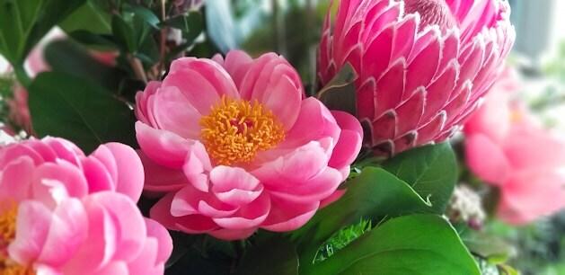 Longview Florist Flower Delivery By Casa Flora Flower Shop