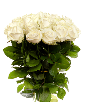 Local Delivery Delivery Rockledge Fl Carousel Florist
