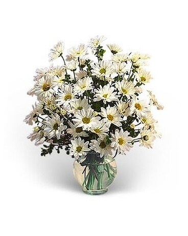 Delightful Daises Flower Arrangement