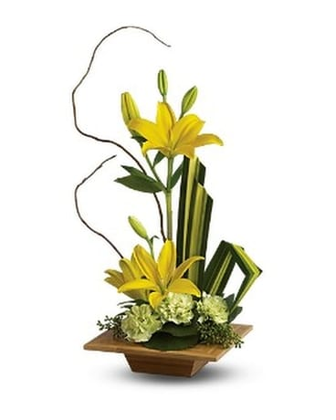 Teleflora's Bamboo Artistry - by Davie Flowers Flower Arrangement
