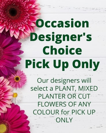 Occasion Designer's Choice Custom product
