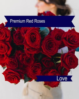 12 Gorgeous  Cut Red Roses Bouquet