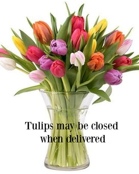 Tulips for You Vase Arrangement Flower Arrangement