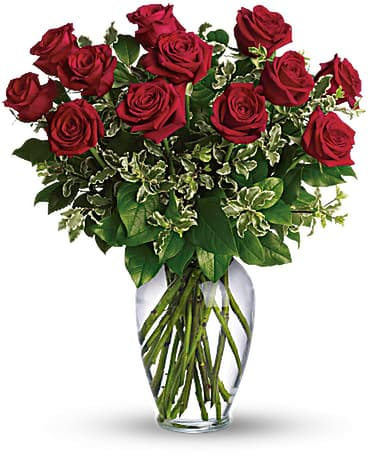 Premium long stemmed roses Flower Arrangement