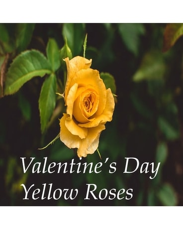 Yellow Roses Valentines Day Flower Arrangement