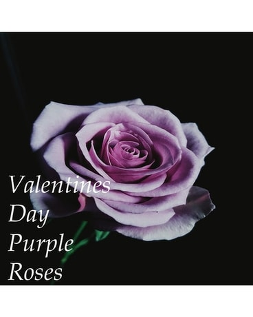 Purple Roses Valentine's Day Flower Arrangement