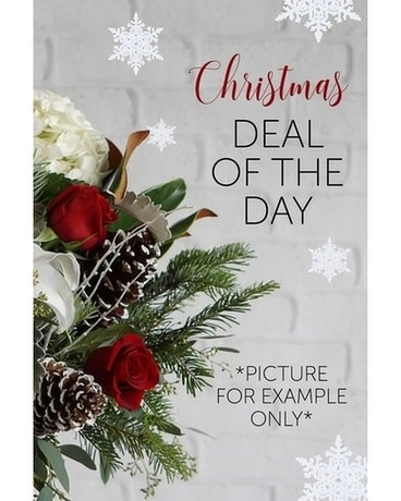 Christmas Deal of The Day! Flower Arrangement