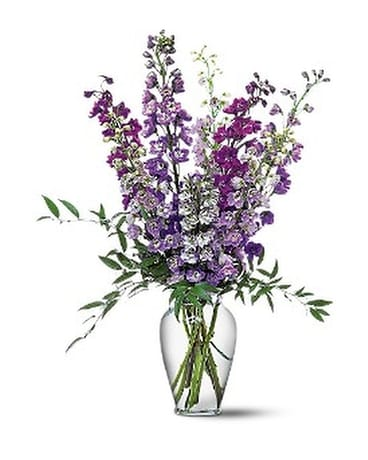 Delphinium Dreams Flower Arrangement